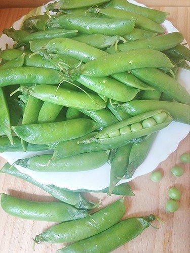Зеленый горошек: свежие стручки и молодые горошины