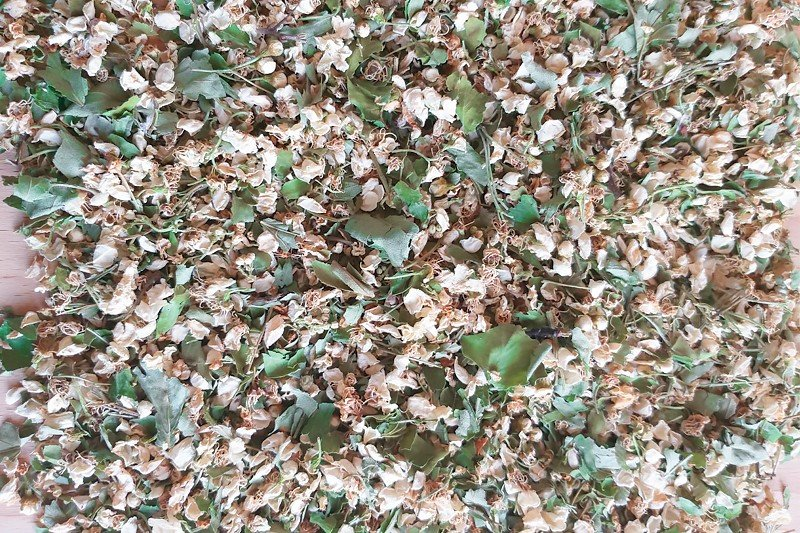 Калина: цветы сушеные