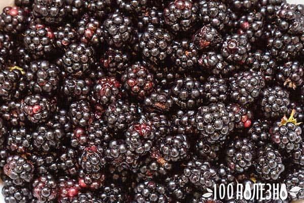 Черные ягоды крупно
