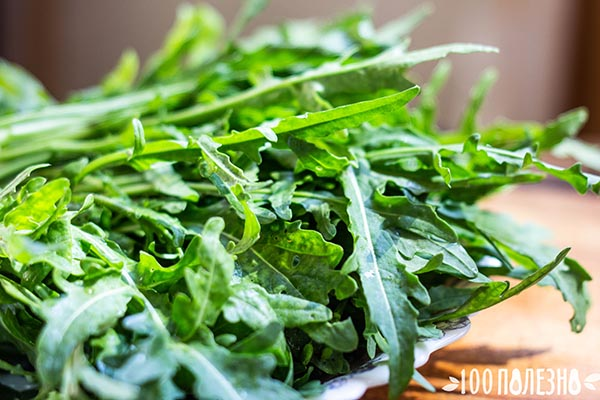 фото рукколы для салата