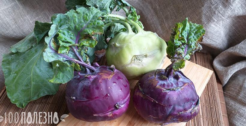 Королева капуст кольраби – польза и вред, лечебные свойства