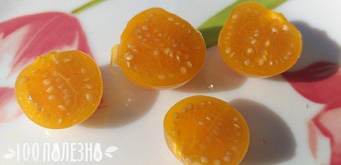 плоды физалиса перуанского в разрезе