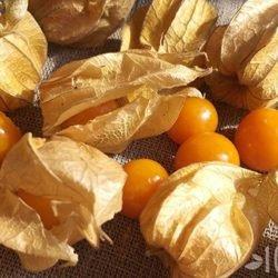 Физалис съедобный: какие у него полезные свойства, и что можно приготовить из плодов?