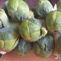 Польза и вред брюссельской капусты, состав, свойства, как приготовить