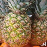Чем полезен ананас, и как его есть?