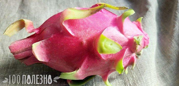 плод питахайи