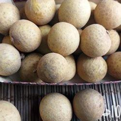 Лонган фрукт: как есть, польза, вред, фото и описание