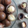 Макадамия – орех, который нужно пилить: состав, полезные свойства, применение