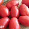 Необыкновенная польза помидоров для организма женщины, о которой многие не знают
