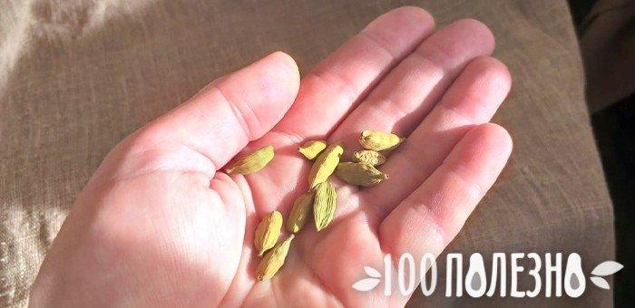 плоды кардамона в ладони