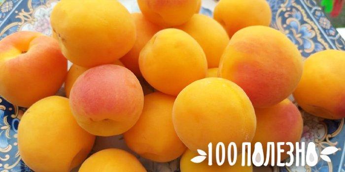 абрикосы на тарелке